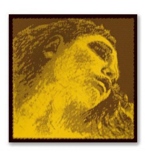 TEL KEMAN EVAH PIRAZZI GOLD E PIRASTRO 315421